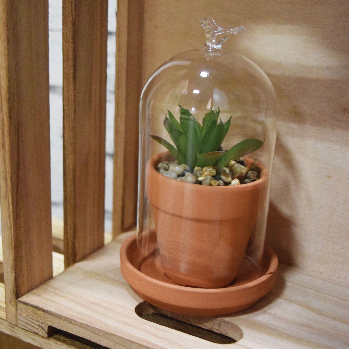 Plante artificielle sous cloche
