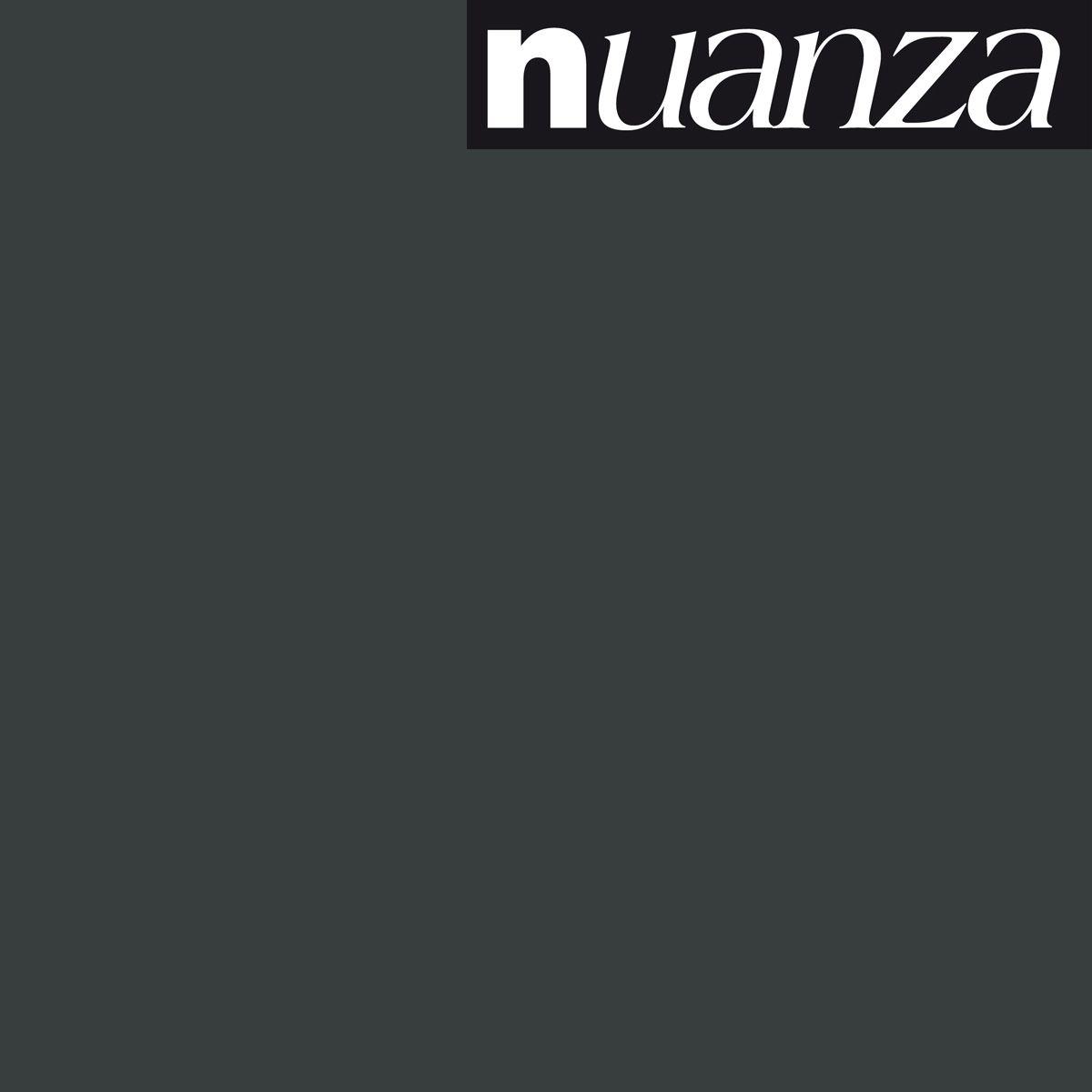 Peinture noir satin multisupports Nuanza 2.5l