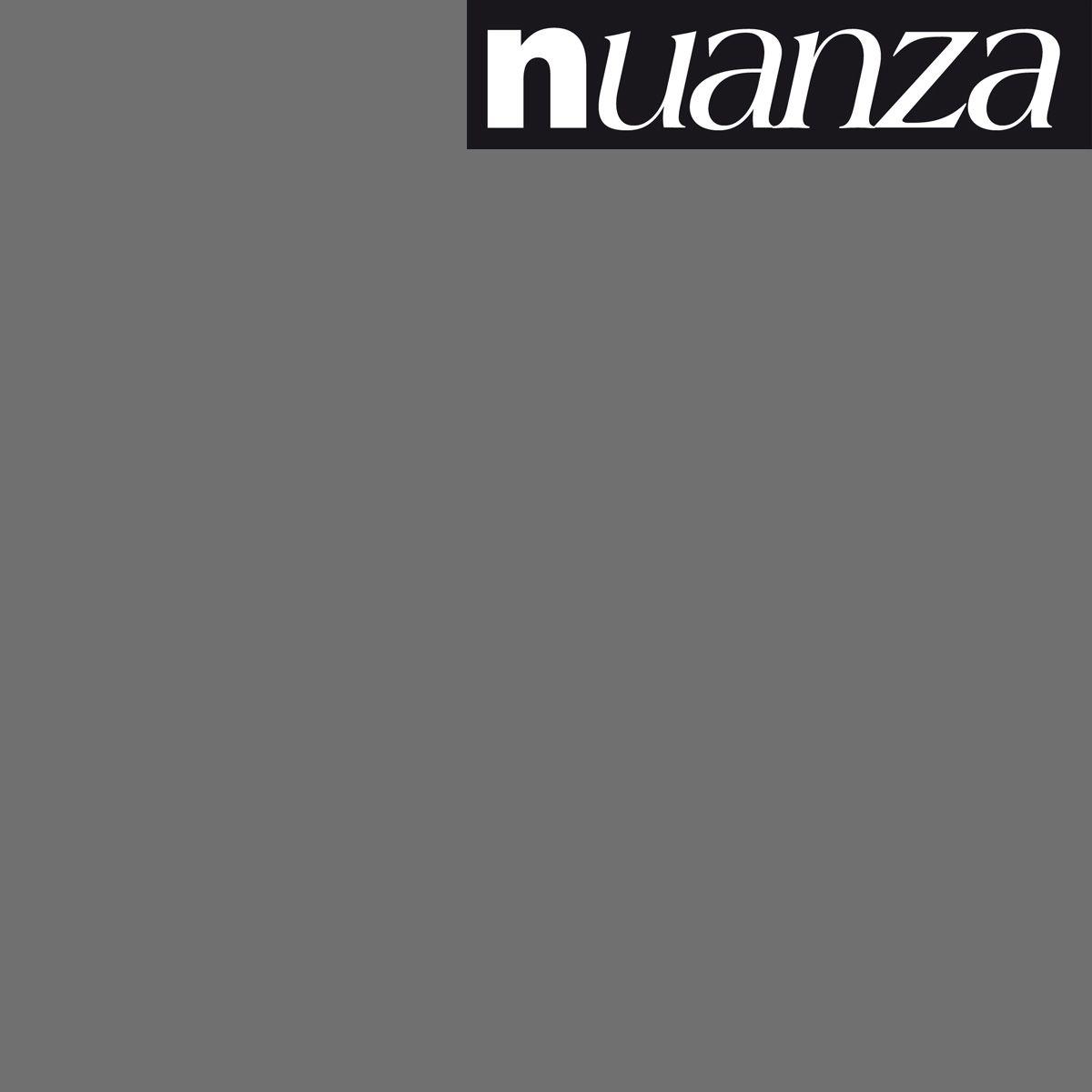 Peinture anthracite satin murs et boiseries Nuanza 2.5l